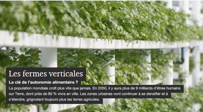 Les fermes verticales, le futur de l'alimentation urbaine ?