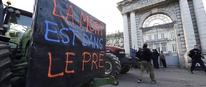 Marche solidaire pour la crise paysanne «La mort est dans le pré»