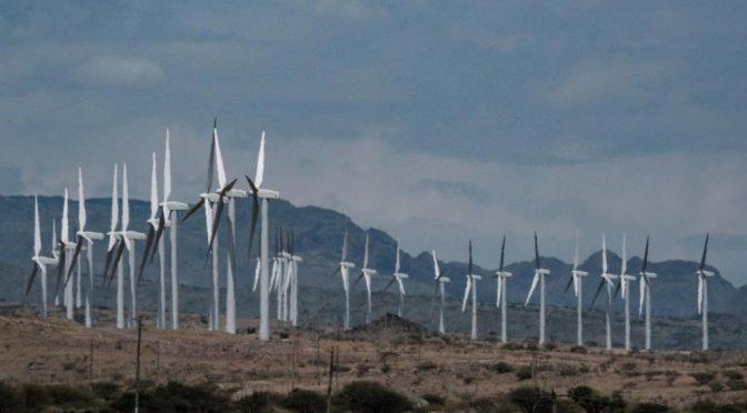 Le plus grand parc éolien d'Afrique
